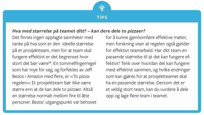 Tips - 2 pizza størrelse